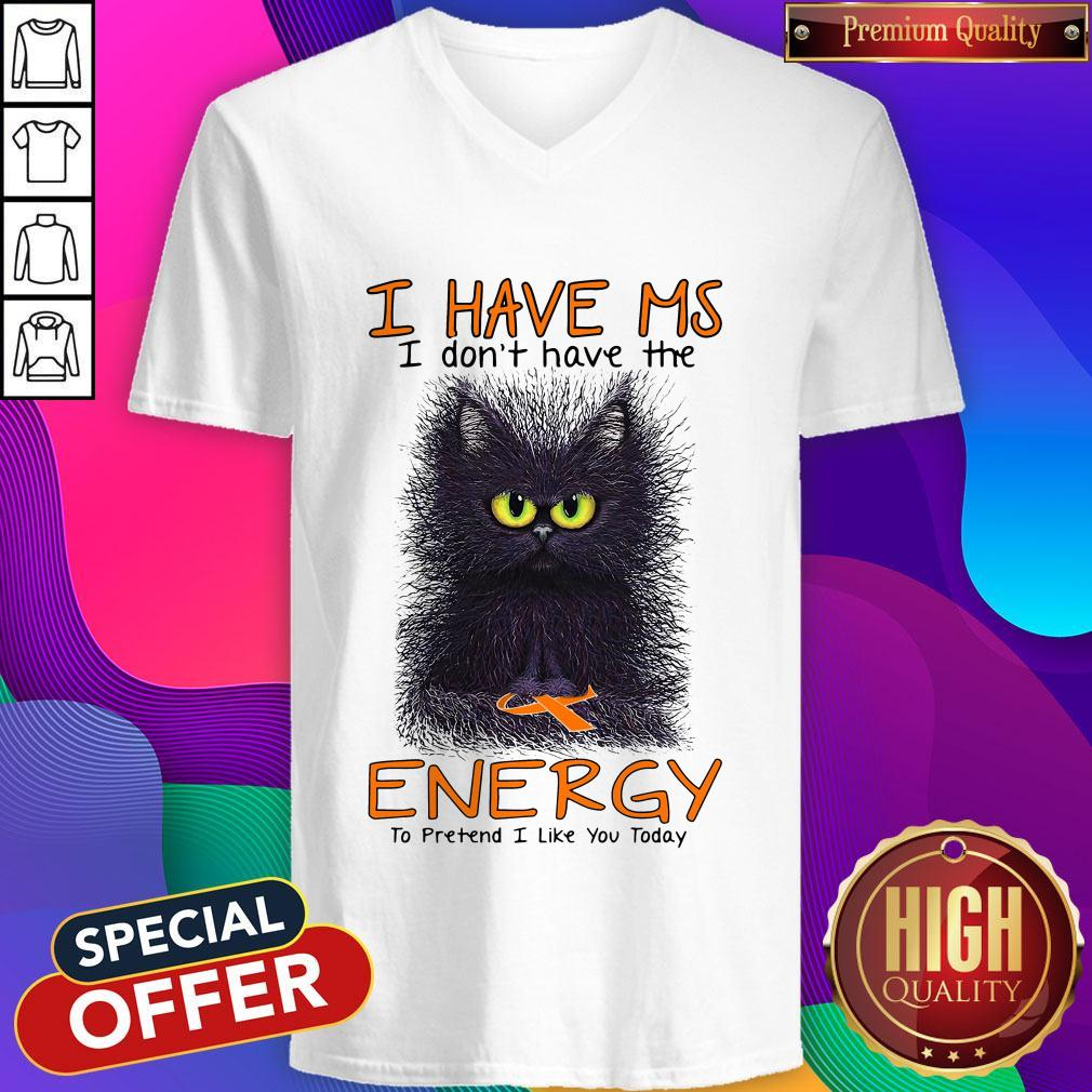 Black Cat I Have Ms I Don't Have The Energy To Pretend I Like You Today V- neck
