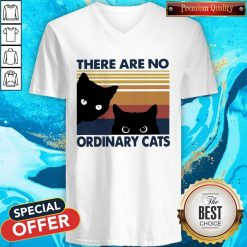 Black Cats There Are No Ordinary Cats Vintage V- neck