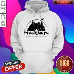 Cute Disney Land Hogwarts School Of Witchcraft And Wizardry Hoodie