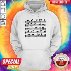 Horse Notes On Sheet Music Hoodie