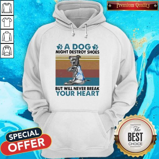 Pit Bull A Dog Might Destroy Shoes But Will Never Break Your Heart Vintage Hoodie