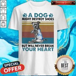 Pit Bull A Dog Might Destroy Shoes But Will Never Break Your Heart Vintage Shirt