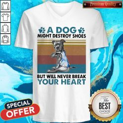 Pit Bull A Dog Might Destroy Shoes But Will Never Break Your Heart Vintage V-neck