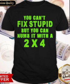 You Can't Fix Stupid But You Can Numb It With A 2 X 4 Shirt