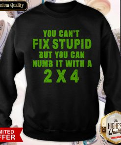You Can't Fix Stupid But You Can Numb It With A 2 X 4 Sweatshirt