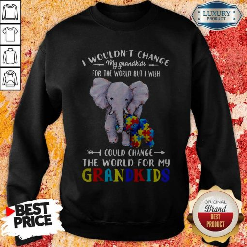 Elephants Autism I Wouldn't Change My Grandkids For The World But I Wish I Could Change The World For My Grandkids Sweatshirt