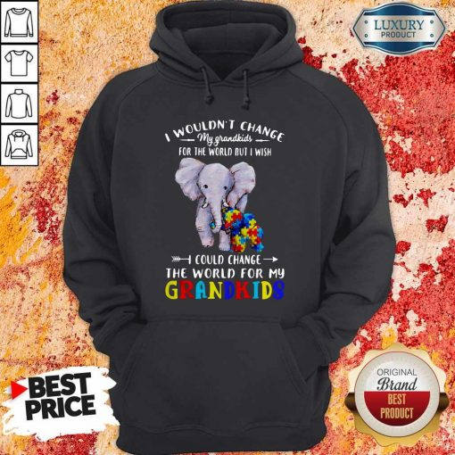 Elephants Autism I Wouldn't Change My Grandkids For The World But I Wish I Could Change The World For My Grandkids Hoodie