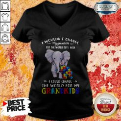 Elephants Autism I Wouldn't Change My Grandkids For The World But I Wish I Could Change The World For My Grandkids V-neck