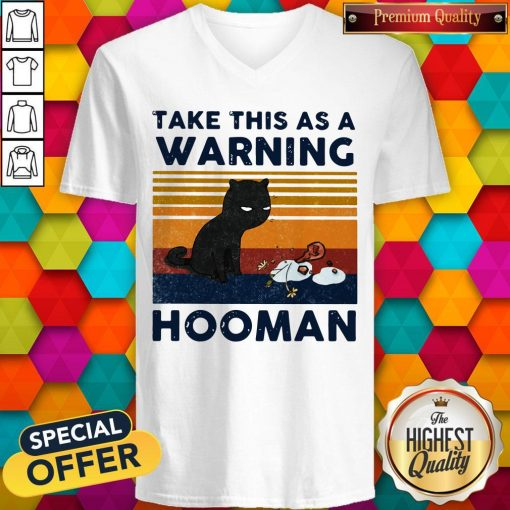 Cat Take This As A Warning Hooman Vintage Retro V-neck