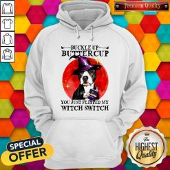 Pitbull Buckle Up Buttercup You Just Flipper My Witch Switch Sunset Hoodie
