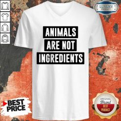 Animals Are Not Ingredients V-neck