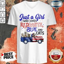 Just A Girl Who Loves Red White Blue And Cats American Flag V-neck