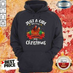 Pretty Just A Girl Who Love Chickens And Christmas Hoodie-Design By Soyatees.com