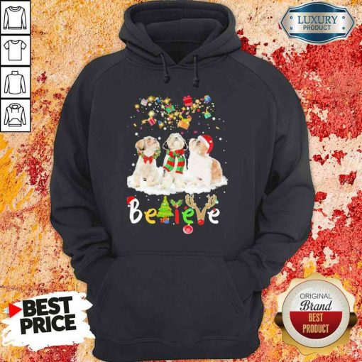 Pretty Shih Tzu Believe Christmas Hoodie-Design By Soyatees.com