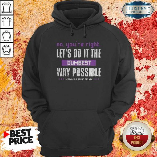 No You'Re Right Let'S Do It The Dumbest Way Possible Hoodie-Design By Soyatees.com