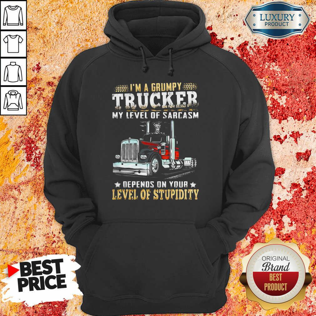 I Am A Grumpy Trucker 5 Level Of Stupidity Hoodie - Design by Soyatees.com