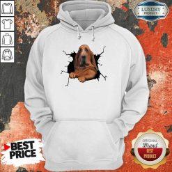 Hot I Love Bloodhound Hoodie