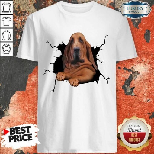 Hot I Love Bloodhound Shirt
