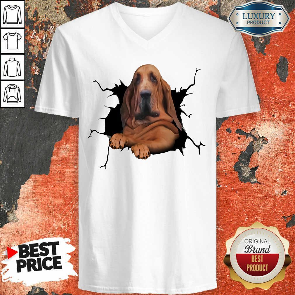 Hot I Love Bloodhound V-neck